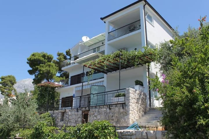 One bedroom apartment with terrace and sea view Bratuš, Makarska (A-2627-b) - Promajna - Apartment