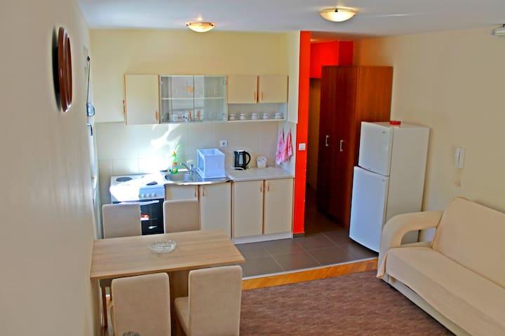 NICE STUDIO-APT. 7 MIN TO THE BEACH - Budva - Apartamento