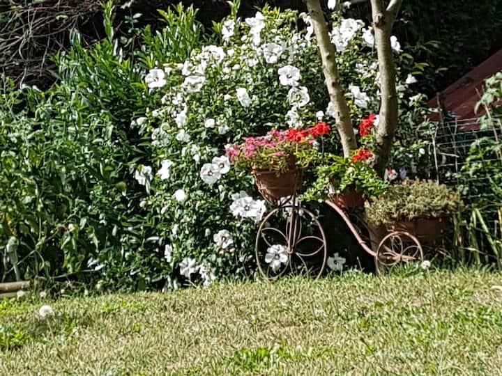 Rez-de-jardin,chambre avec vue arborée