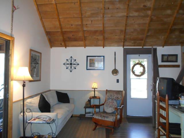 Cozy Chalet Cabin: Finger Lakes - Hammondsport - Houten huisje