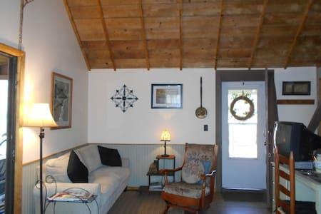 Cozy Chalet Cabin: Finger Lakes - Hammondsport - Sommerhus/hytte