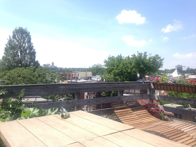 Roof deck also perfect for sunbathing