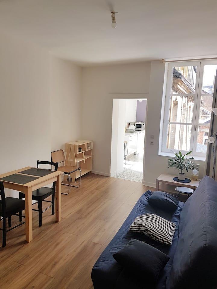 Appartement centre-ville (100m place ducale)