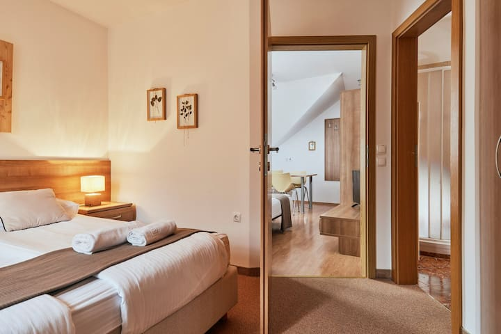 Herbal themed hotel near welness and spa centre - Double room with extra bed