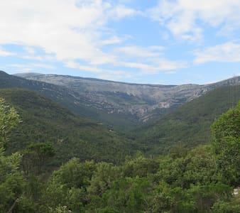 Yourte pleine forêt et rivière - Saint-Vallier-de-Thiey - Yurt