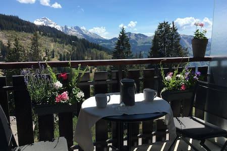 Randonnées,vélos,skis,studio cosy en Haute-Savoie