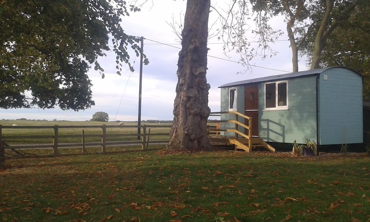 Conker Cabin - shepherds hut with a view