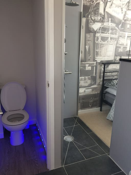 Toilet and open bathroom