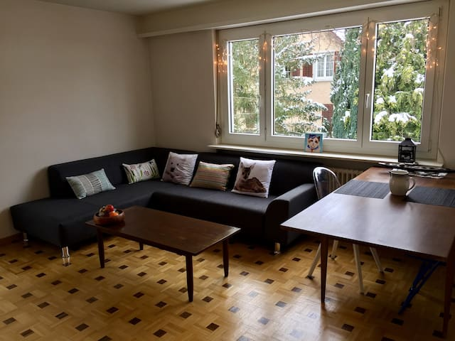 King bed private room in well furnished apartment - Winterthur - Huoneisto