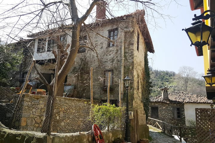 HISTORIC FAMILY MANSION CHRISTODOULOU 5* build1930