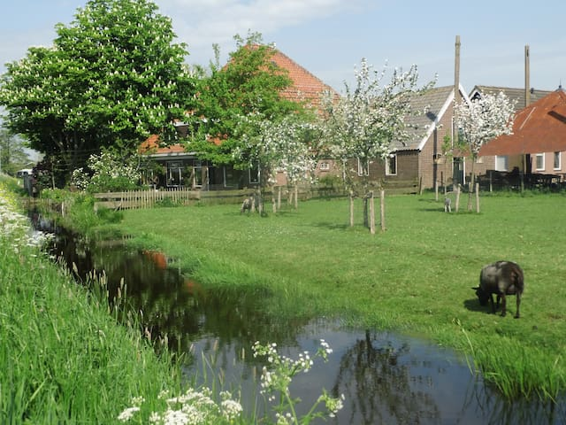 Peacefull country side near Amsterdam - Katwoude - Appartement