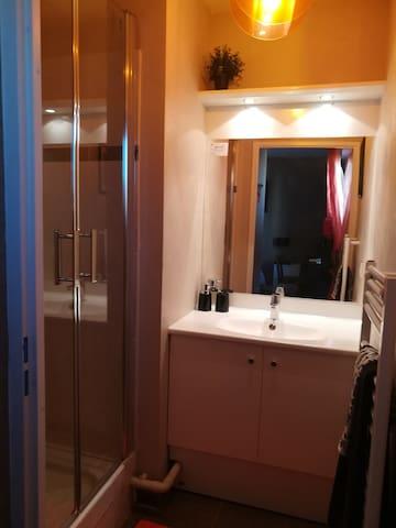 La salle de bain dans la chambre - the private shower in the room