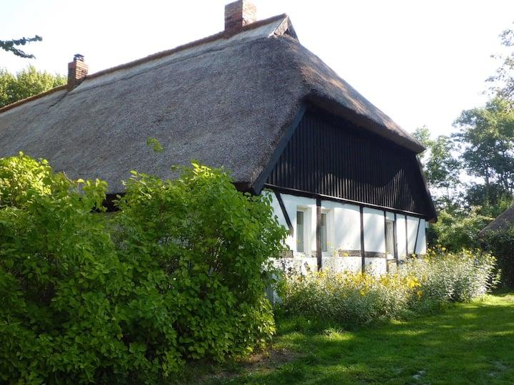 Bondgard-Ferienhaus