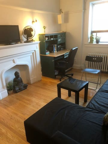 Charming and Bright 1 BR Apt in great neighborhood