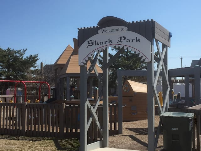 Shark Park Playground -Kids Love It!