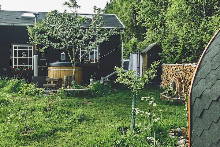 Blickinsfreie - Cabin