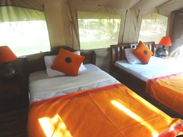 Camp with Swimming Pool @Sekanani Gate, Masai Mara