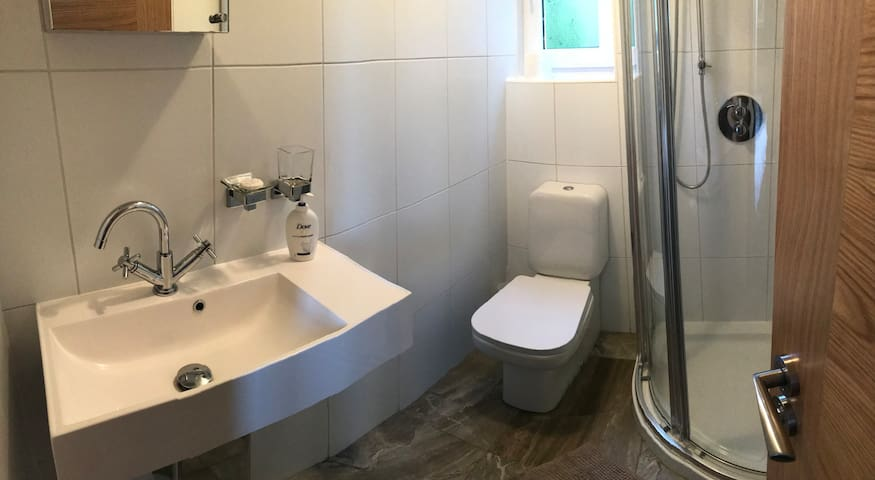 Wash hand basin, toilet and shower