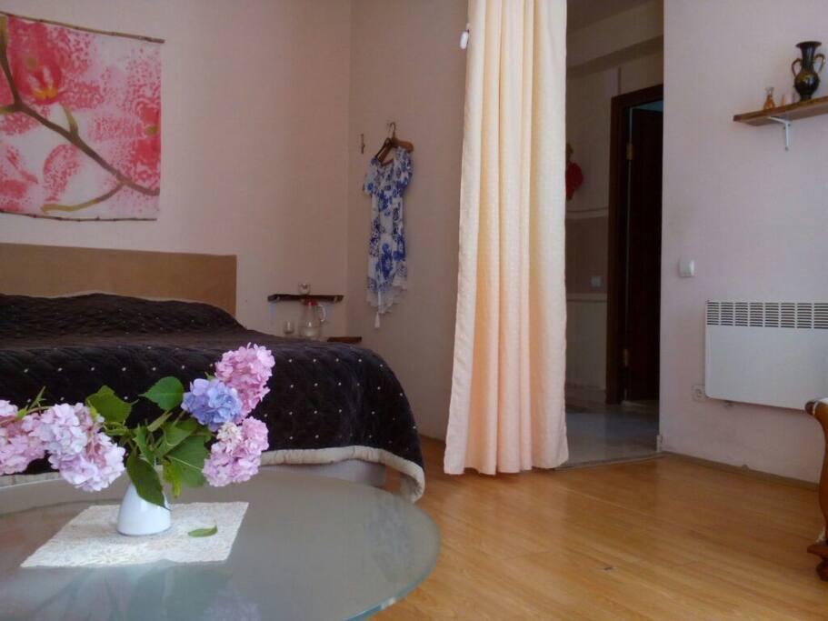 гостиная и спальня разделены шторой