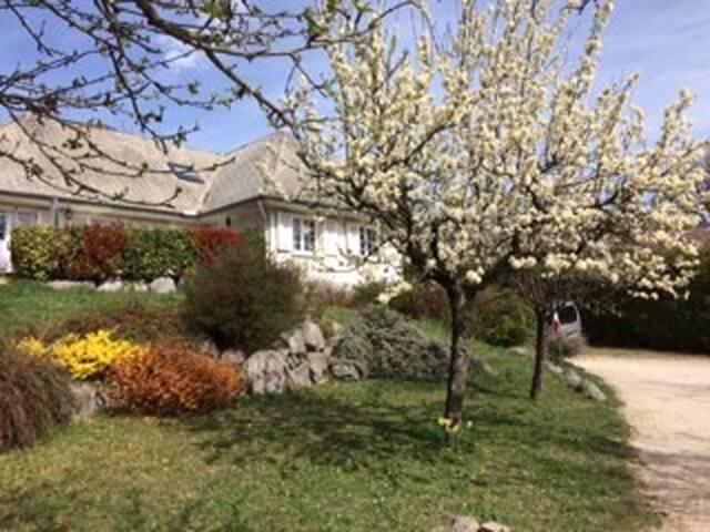 Maison spacieuse au pied de la chartreuse - Saint-Nazaire-les-Eymes - House