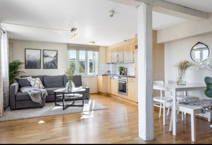 50 sqm Apartment at the heart of Trondheim