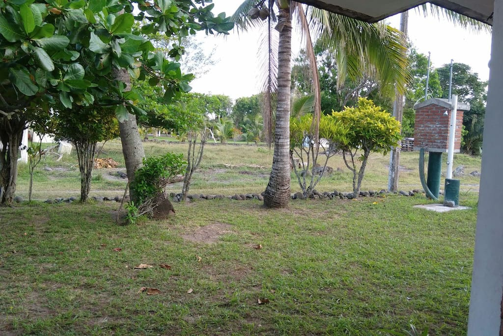 Jardin frente a la casa