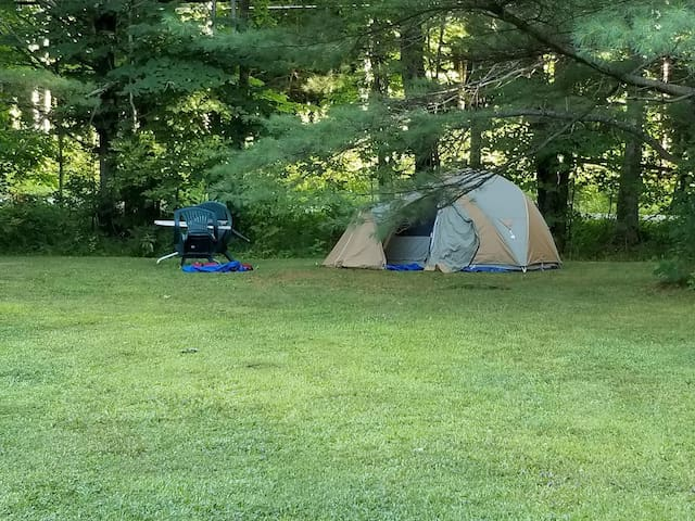 Spot for 1 tent / A