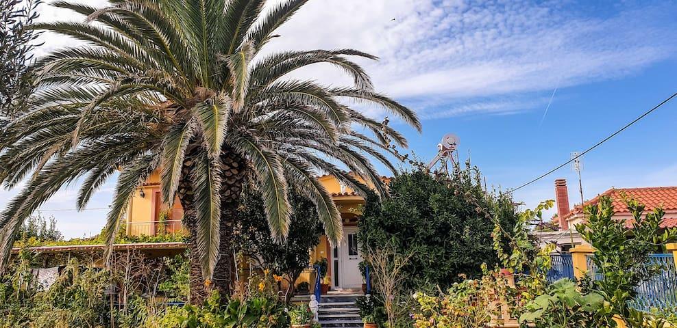 Divine Villa Amidst Lush Garden Walk To Beach