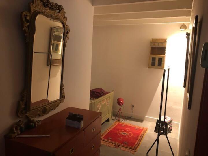 chambre meublée, espace cuisine et douche