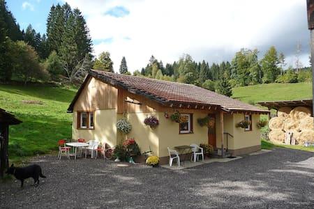 Marwitz 4448.1 - Lenzkirch - Villa