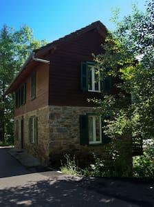 Le Mas Simone: Chalet - Finhaut - Alpstuga