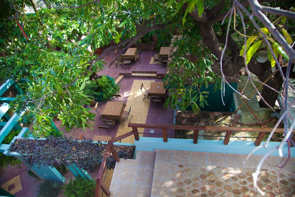 Main backyard - relax while reading your favourite book or drinking your mojito !!!