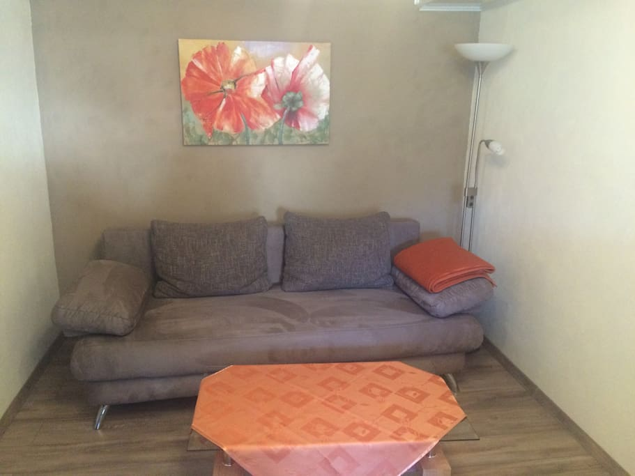 Schlafcouch/Wohnzimmer
