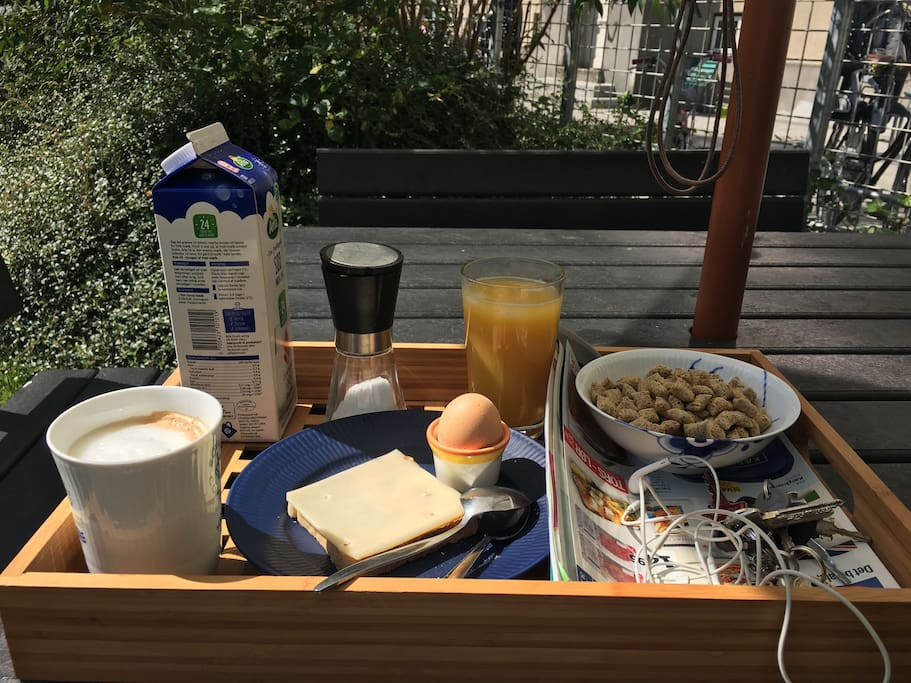 Breakfast in the yard