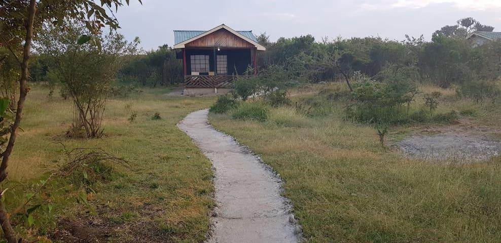 Mara Topi Lodge, Closer to the Ololaimutia gate