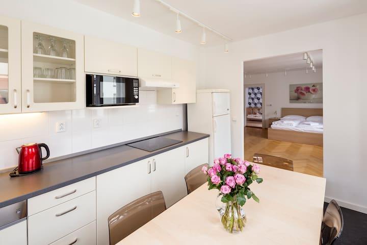 Spacious, clean and bright 2-bedroom apartment - Prague - Apartment