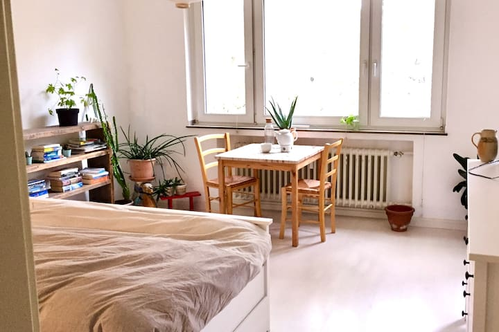 Bright appartment in the heart of the city