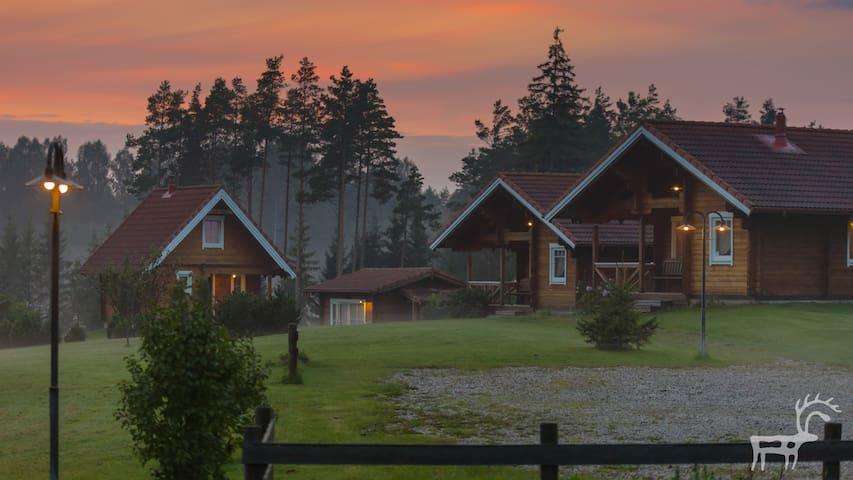Cozy cottage BRIEDĪŠI - Raiskums - Casa
