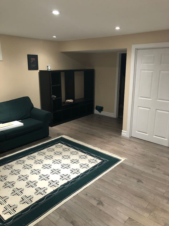 Brand new basement with large living room. 800 sq.ft. of space!