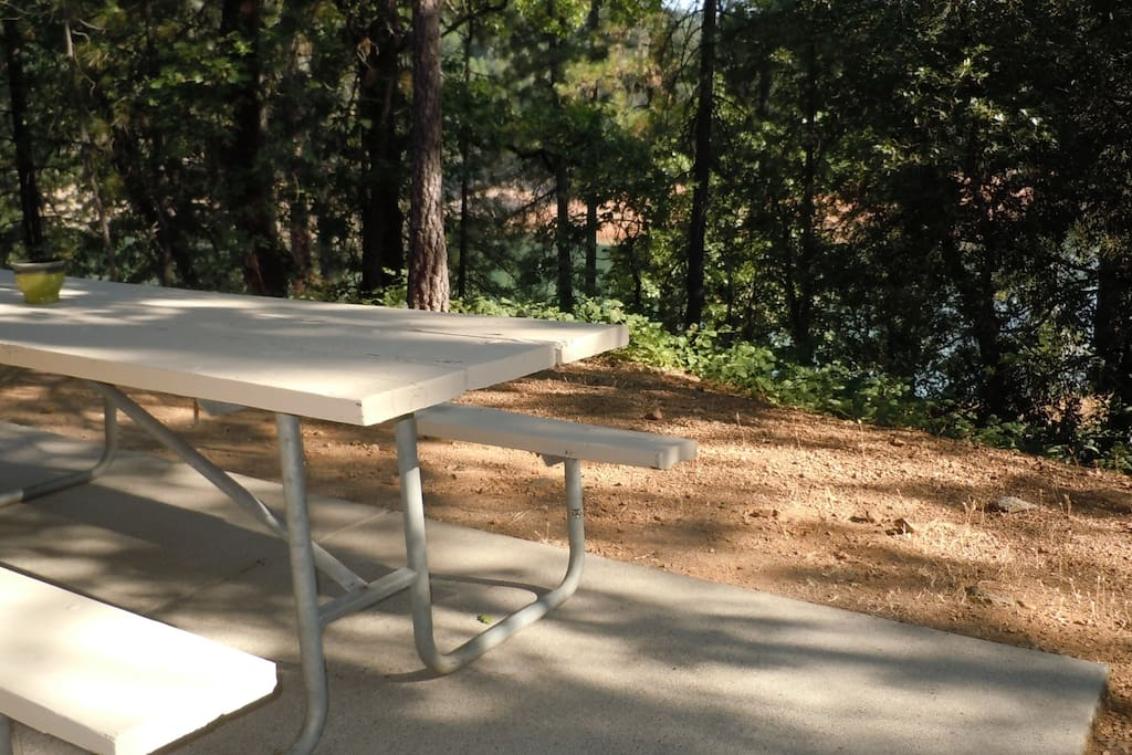 Picnic table located out back door