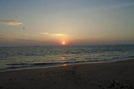 Alankuda Beach Cabanas (AC room with Breakfast) - Kalpitiya - Oda + Kahvaltı