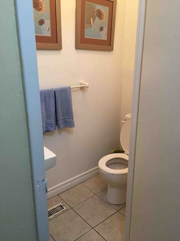 Entrance extra toilet (First floor )
