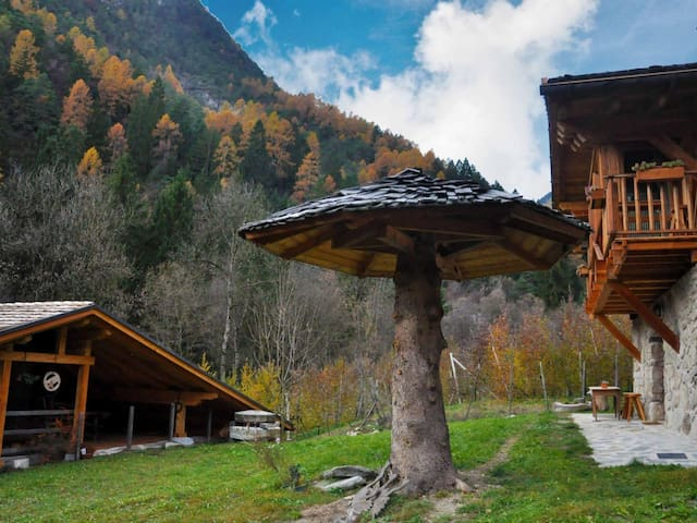 Chalet in Livo ID 238