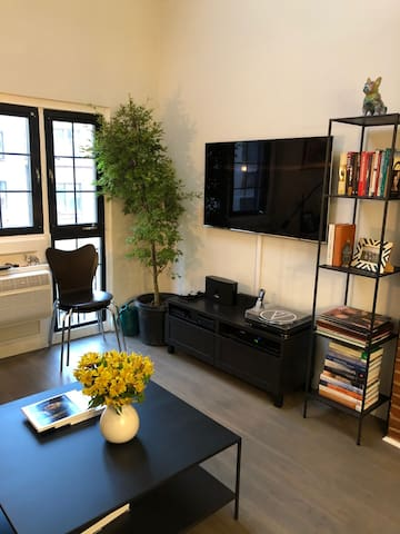 Beautifully Decorated 2bath Loft by Gramercy Park
