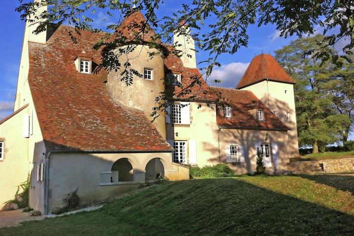 Precioso castillo en el río en Le Veurdre