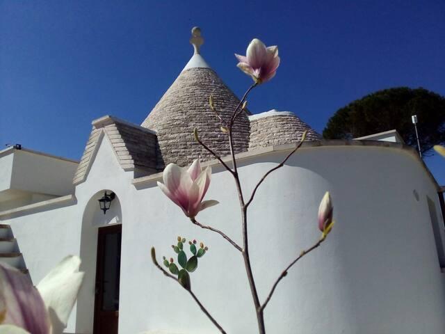 Casa vacanza IL BANCALETTO trulli&relax - Martina Franca - House