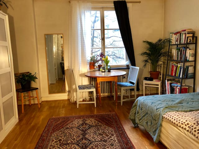 Charming Södermalm studio
