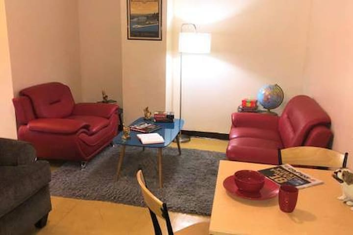 2 Bedroom Downtown Apt | Friends & Families Ideal!