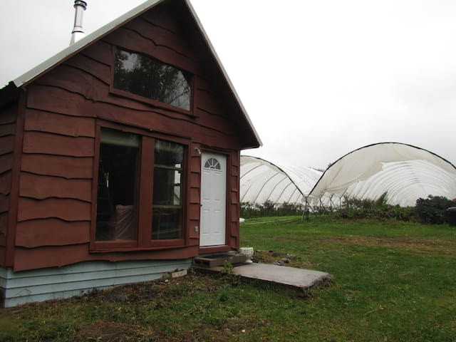 Private Cabin on Organic Farm