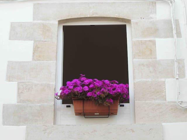 "Typical  apartment of Salento ""Le Fiche d'India"""